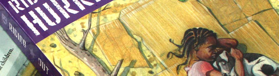 detail of riding out the hurricane novel cover design and illustrations