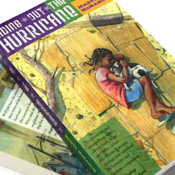 book cover design and illustration for riding out the hurricane novel