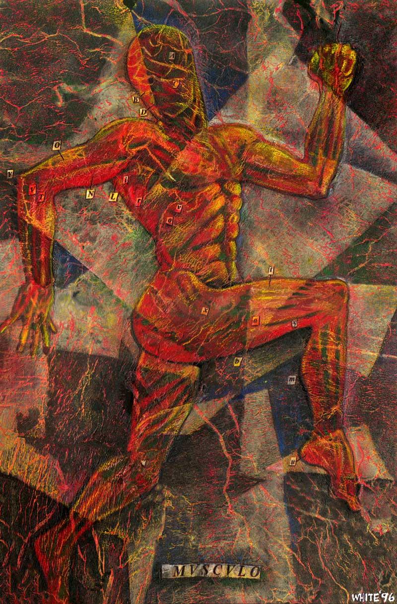anatomical style painting vesalius