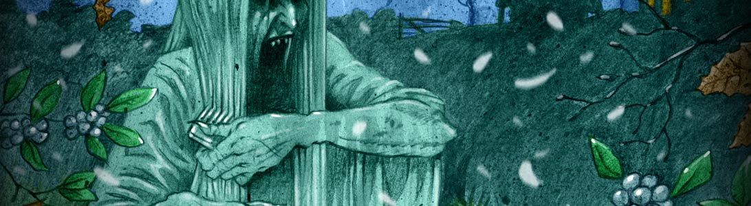 detail of scary horror colour book illustration of irish banshee