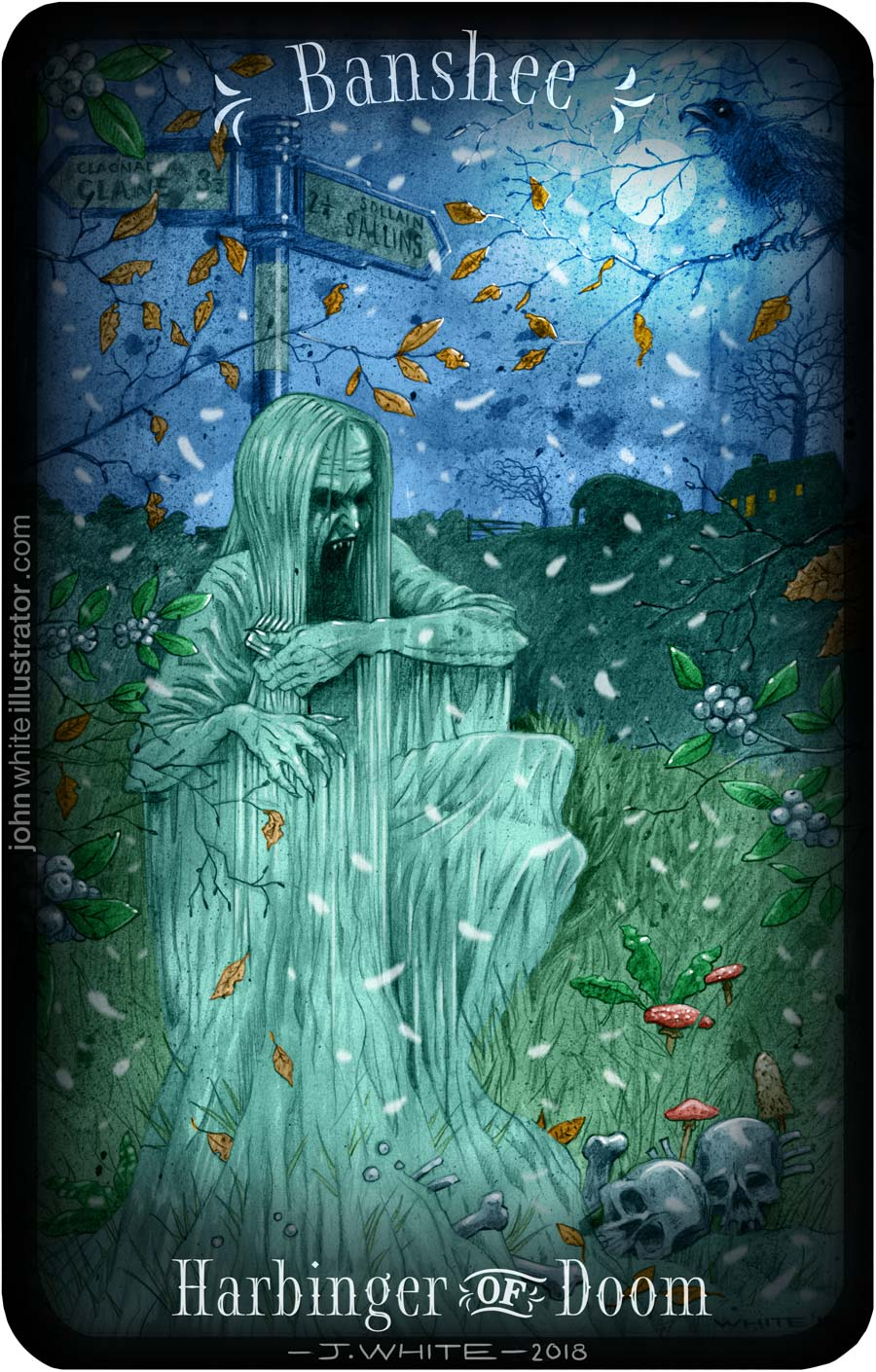 scary horror colour book illustration of irish banshee
