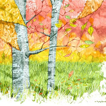 preview detail of painted drawn illustration of silver birch trees