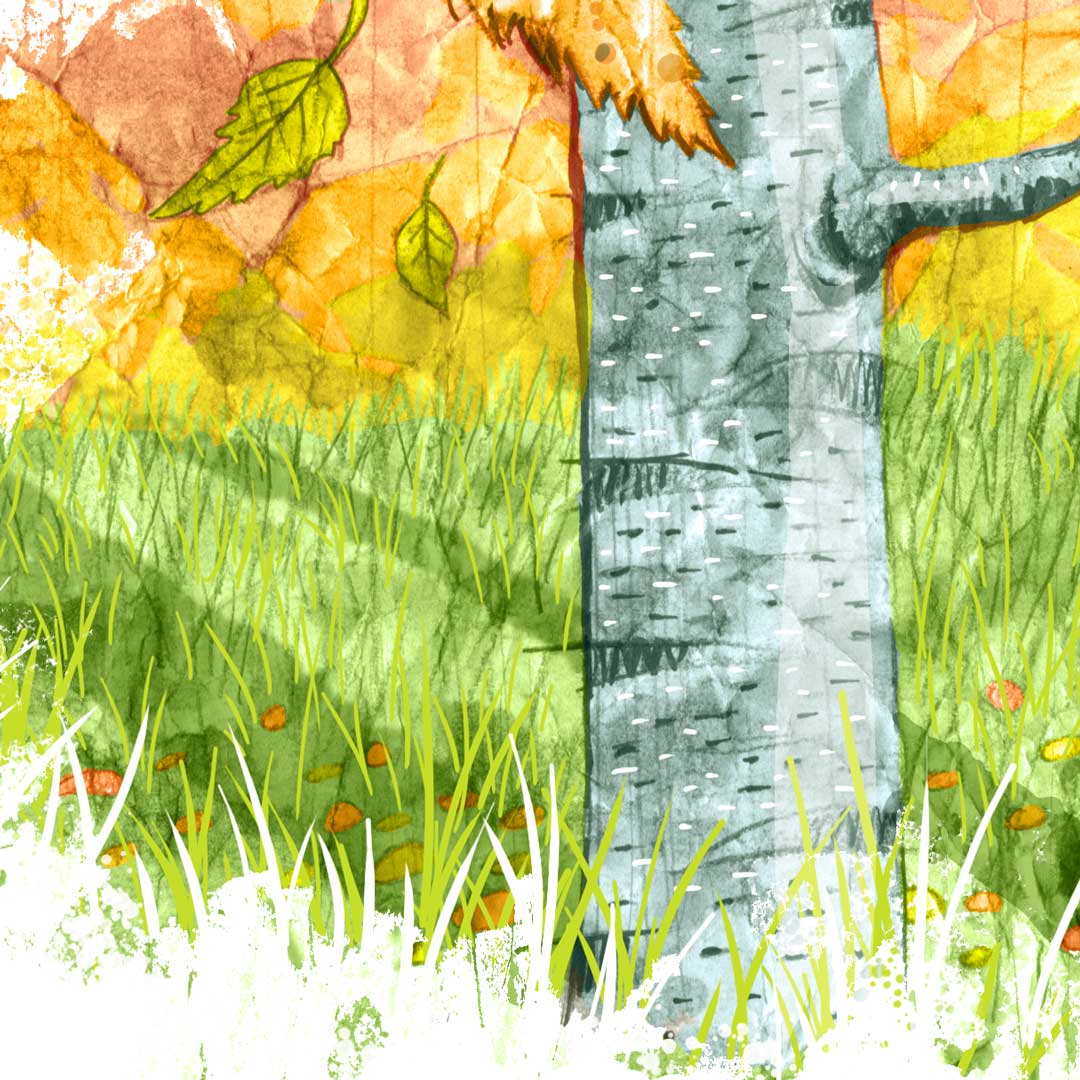 detail of painted drawn illustration of silver birch trees