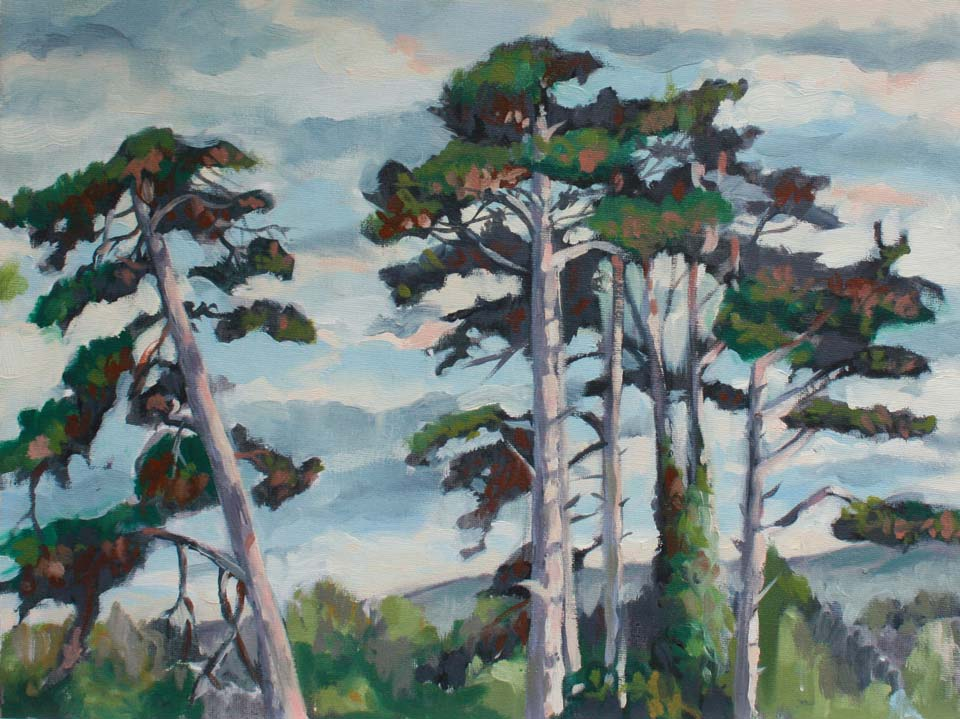 landscape study in oils of pine trees at sunset