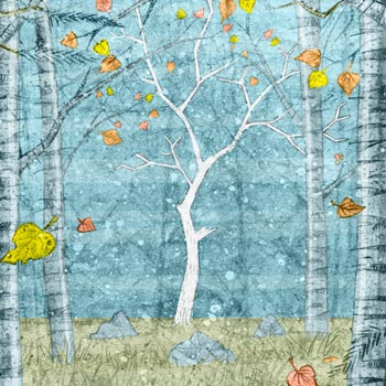preview of colour illustration of woodland with pine ash and silver birch