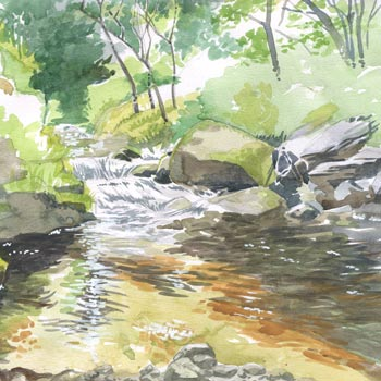 watercolour knocksink woods river