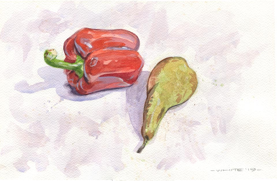 watercolour still life pear pepper